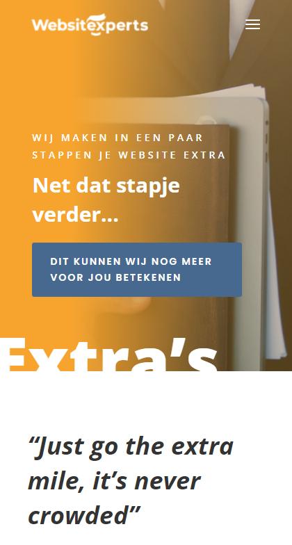 voorbeeld websitexperts 4