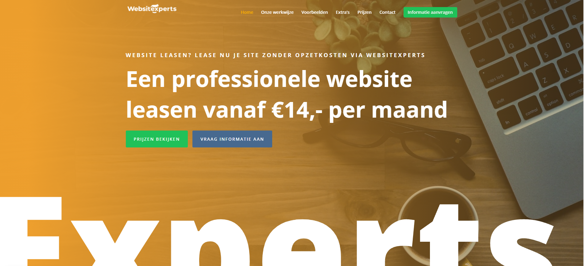 voorbeeld websitexperts 1